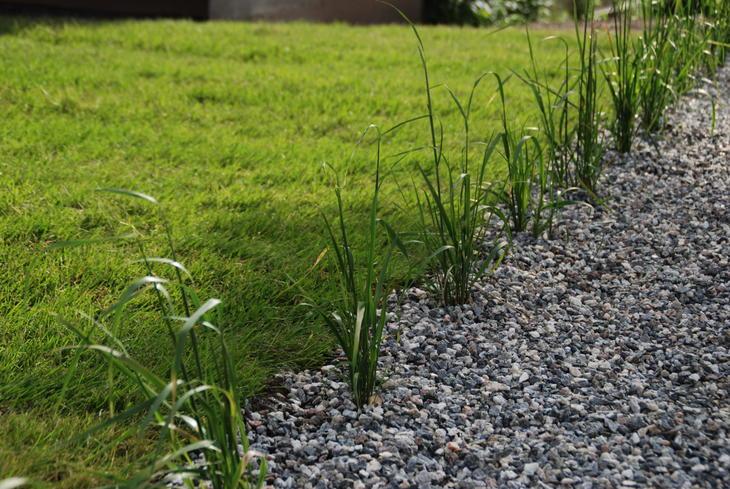 Plen lagt rett mot en kant av grus. Prydgress plantet direkte i grusen.