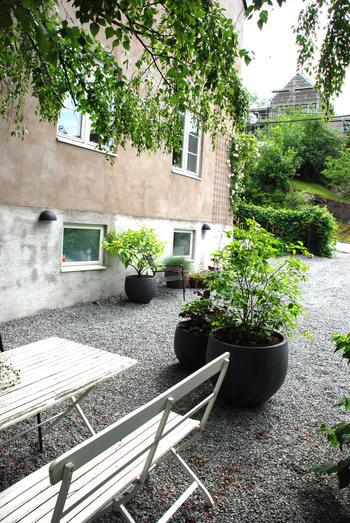 Et inngangsparti med hvit trebenk og bor, samt mange busker plantet i store potter.