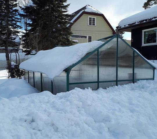 Et hobbydrivhus begravd i tung snø.