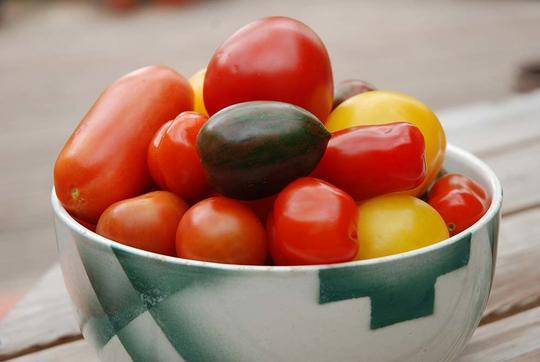 Mange tomater i forskjellige farger i en poreslensskål hvitt og grønt fra Egersund.