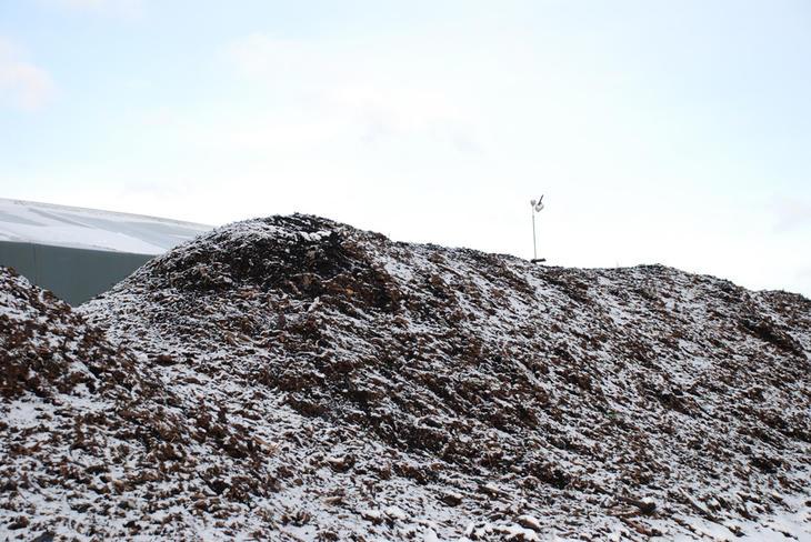 En komposthaug på Grønmo dekket av snø, med termometer på toppen.