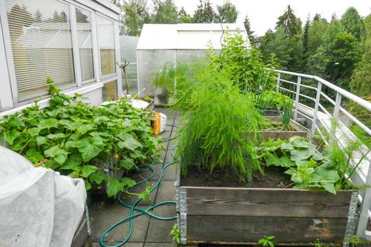 Plantekasser på balkong