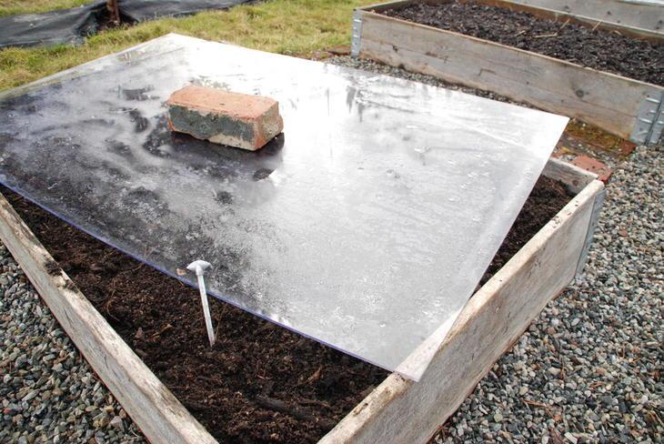 Pallekarm dekket med et pleksiglass for å øke jordtemperaturen.