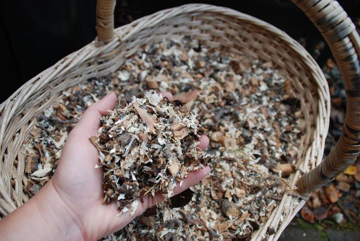 En kurv med strø til å blande i komposten. En hånd holder opp litt strø.