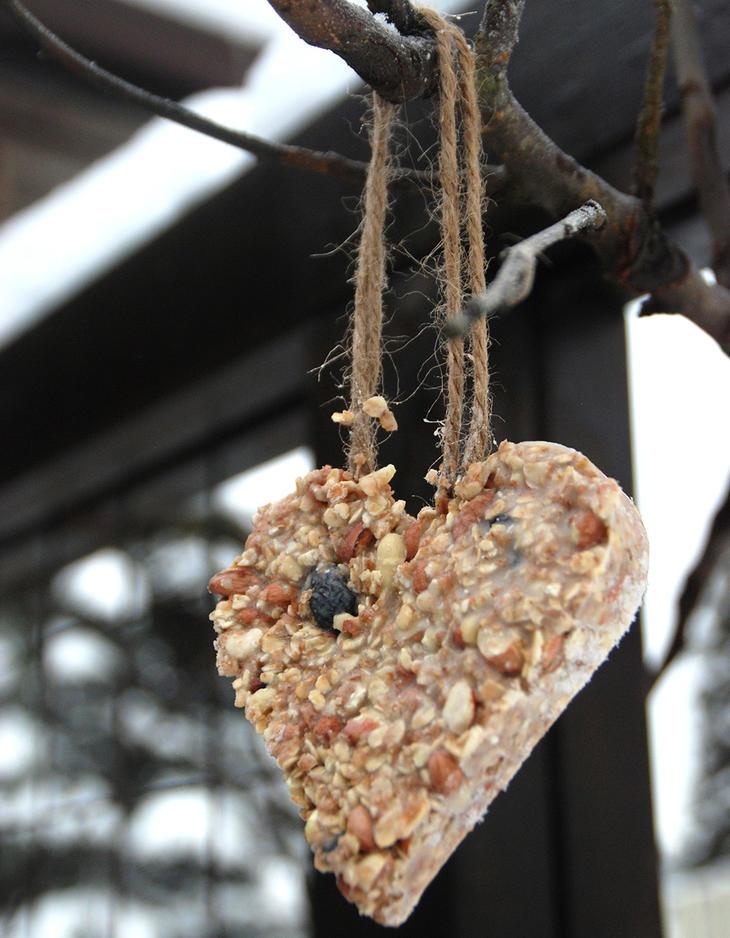 Hjerteformet fuglemat