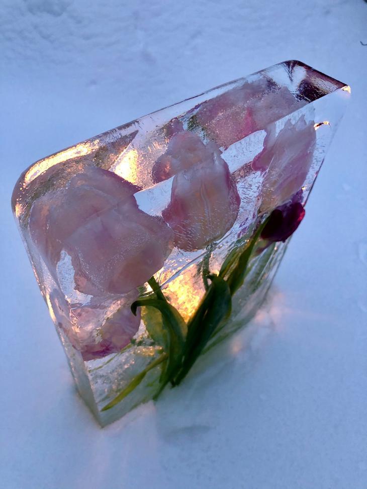 Is-tablå med krystallklar is.