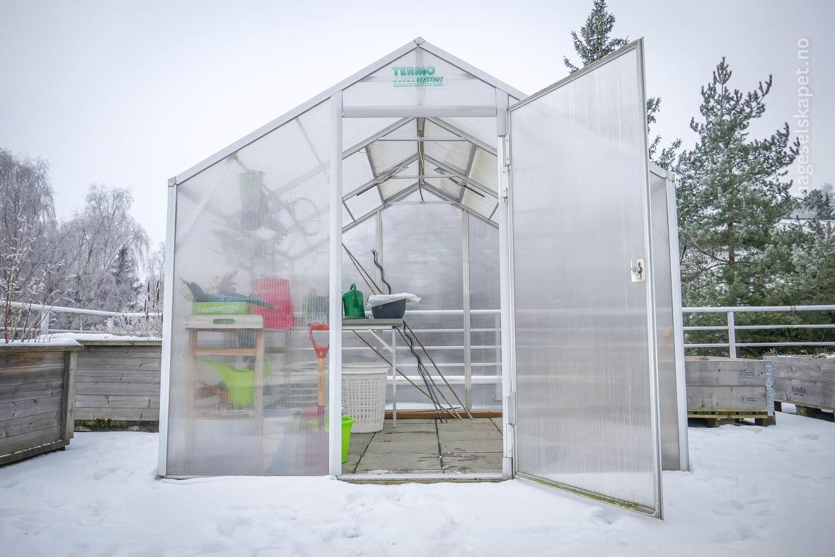 Drivhus om vinteren